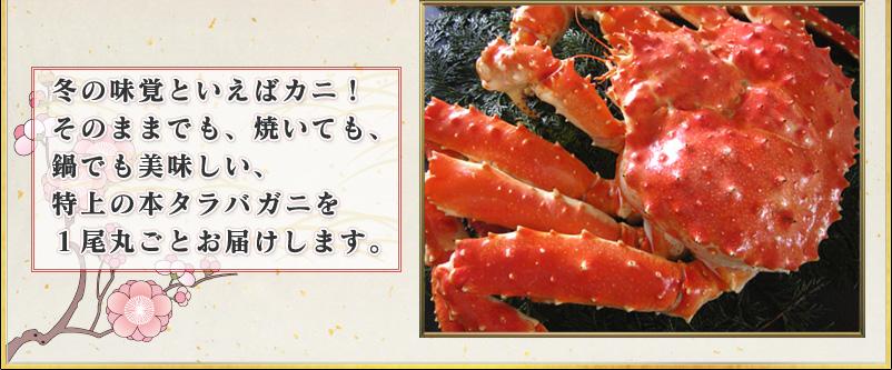 冬の味覚といえばカニ!そのままでも、焼いても、鍋でも美味しい、特上の本タラバガニを1尾丸ごとお届けします。
