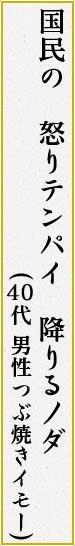 国民の 怒りテンパイ 降りるノダ(つぶ焼きイモー 男性 40代)