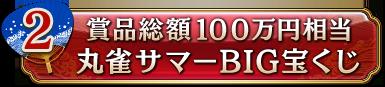 賞品総額100万円相当 丸雀サマーBIG宝くじ