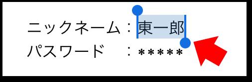 iOSでのコピー/貼り付け(ペースト)の操作方法(1)