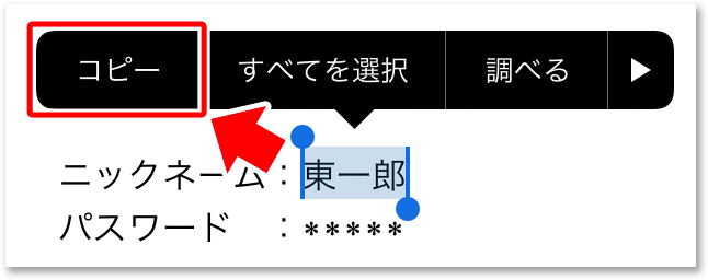 iOSでのコピー/貼り付け(ペースト)の操作方法(2)